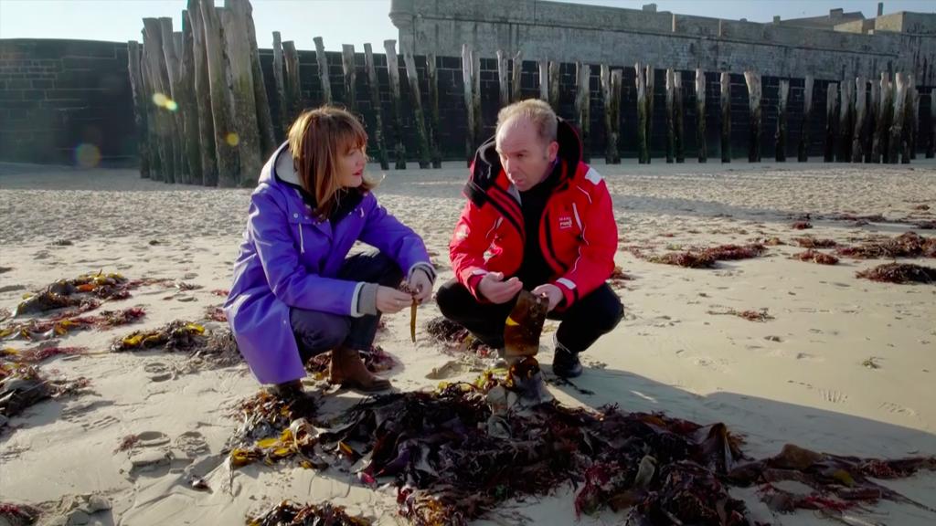 Détours – Et si on remplaçait le plastique par des algues ?