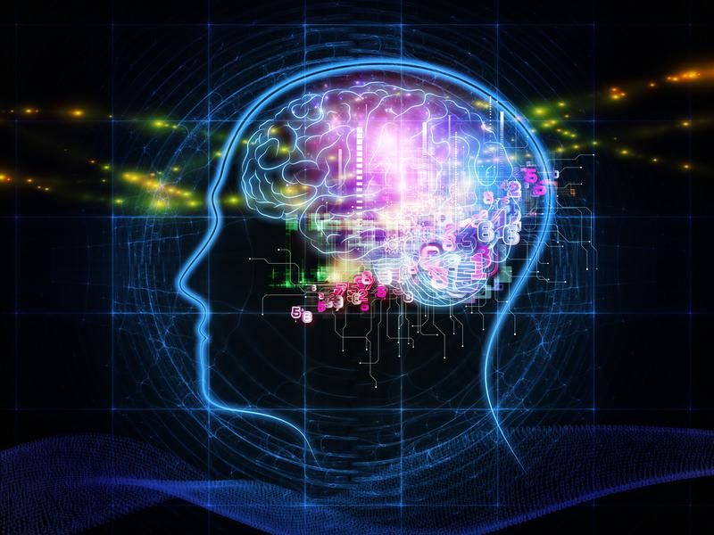 Cinq façons de régénérer son cerveau