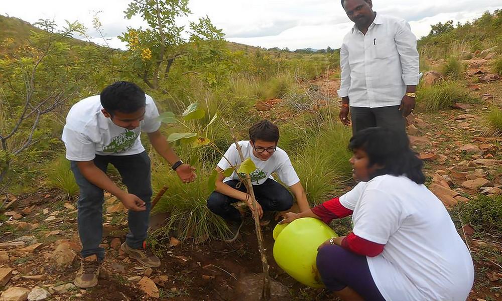 Pour sauver la planète, il plante des arbres... par millions !
