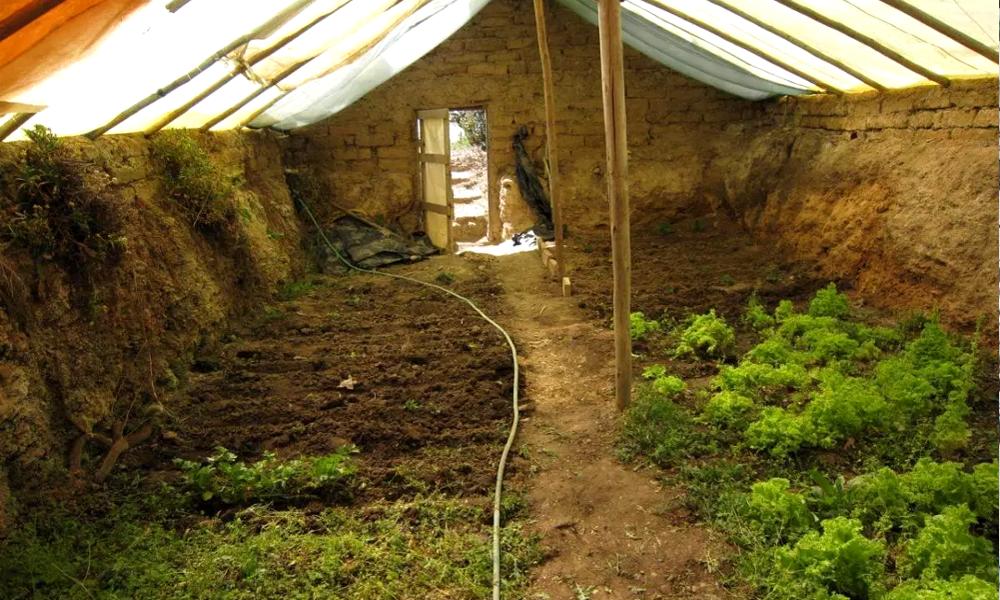 Une serre enterrée pour des légumes toute l'année