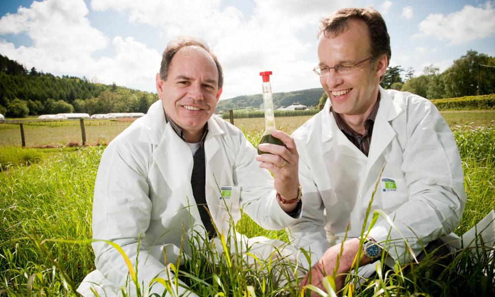 So green : des Belges ont produit un carburant à base d'herbe
