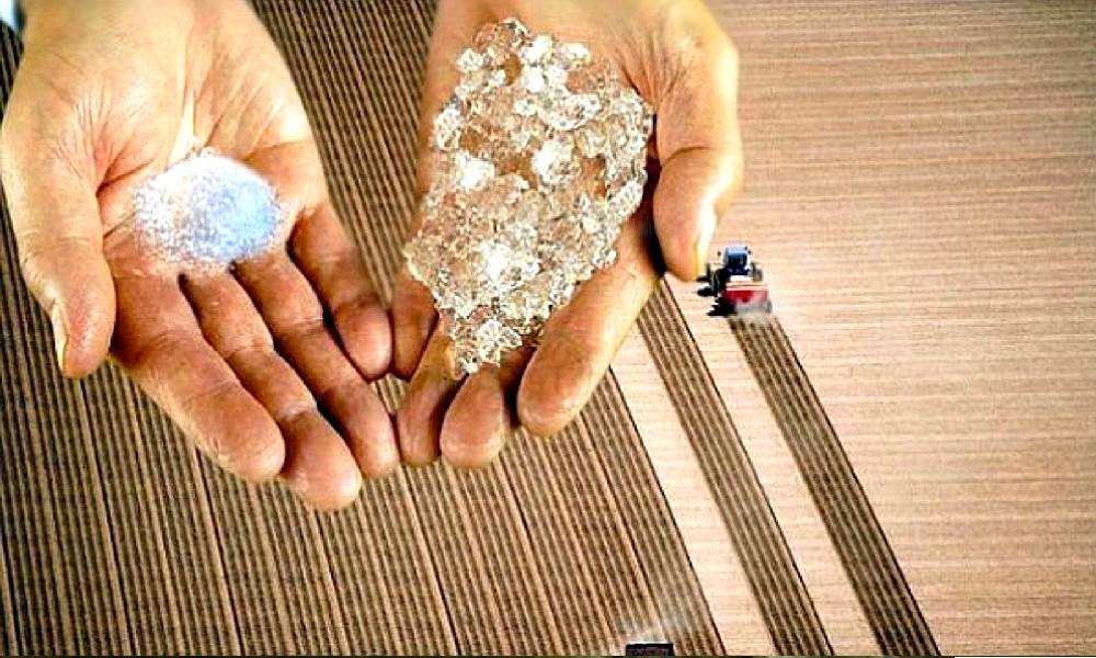 Avec ces cristaux magiques, vos plantes poussent sans eau