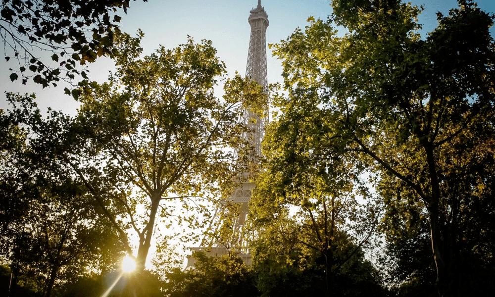 Paris va planter 170 000 arbres pour transformer ses boulevards en forêt géante