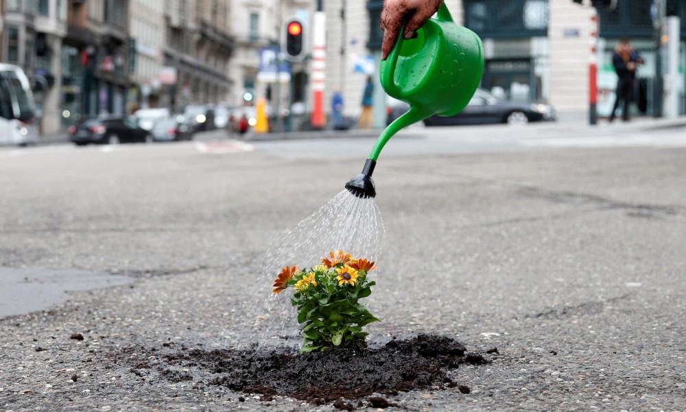 À Tarbes, on a le droit de planter des fleurs pour embellir son trottoir