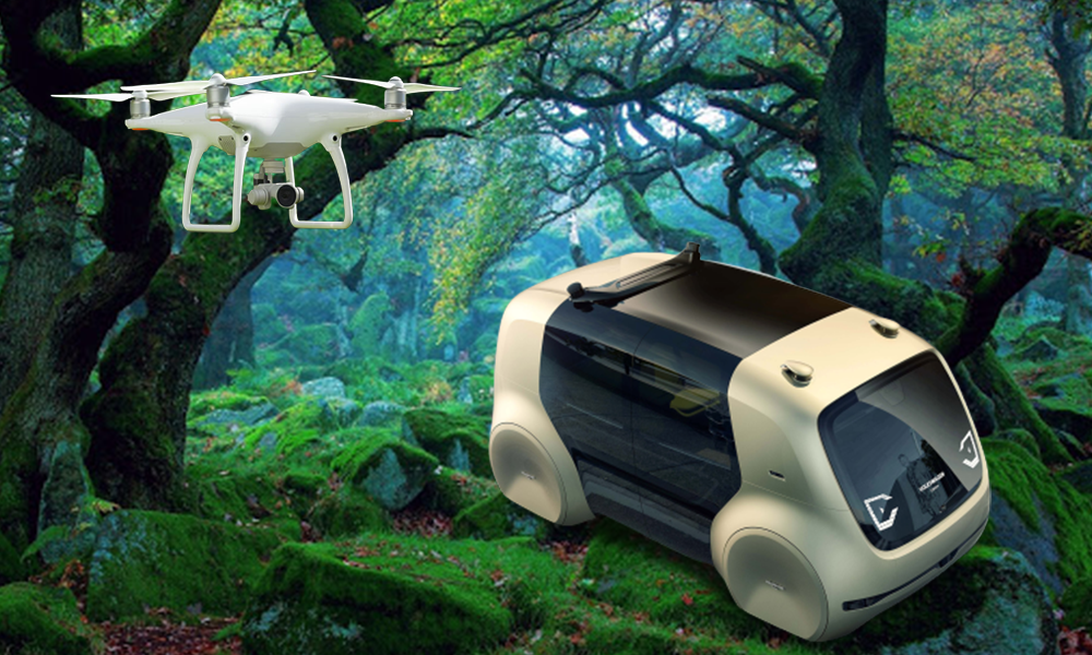 La mythique forêt de Robin des Bois accueillera bientôt… des voitures autonomes